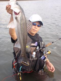 110627_nishiyama_03.jpg