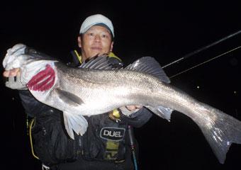 120108_nishiyama_01.jpg