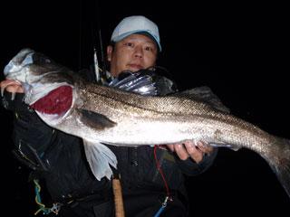 nishiyama8_1.jpg
