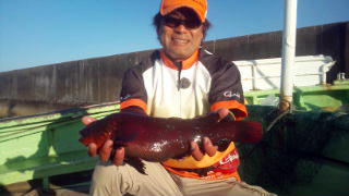 140426_hashimoto_02.jpg