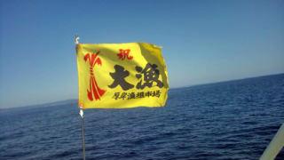 141001_hashimoto_06.jpg