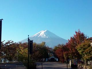 141129_shingo_01.jpg