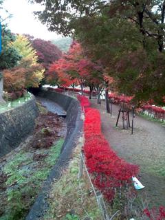 141210_shingo_04.jpg