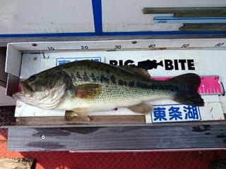 160526_matsumura_03.jpg