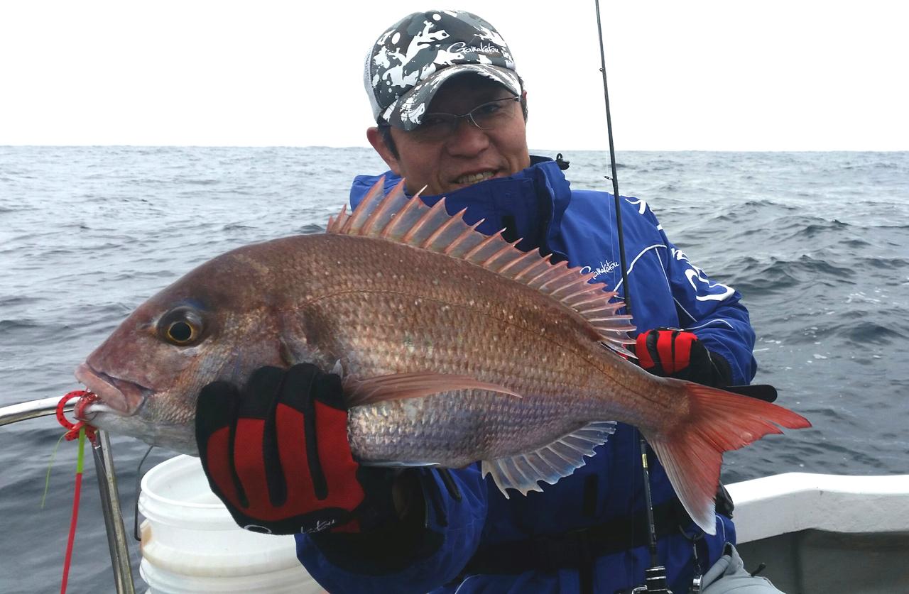 東北日本海の春真鯛始まる。