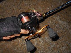 真夏の夜の釣り